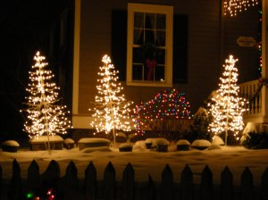 lite christmas trees