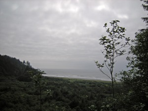 view from lighthouse trail